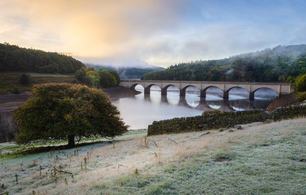 Picture frost, autumn, forest, the sky, grass, clouds, trees, landscape, bridge, fog, river, stones, tree, hills, …