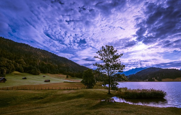 Picture field, autumn, forest, the sky, grass, mountains, nature, lake, blue, tree, hills, the slopes, the …