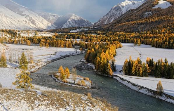Picture river, trees, winter, snow, stones