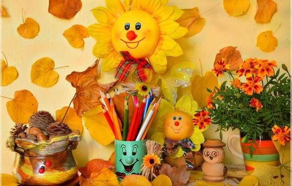 Picture Pencils, Flowers, Souvenirs, Autumn leaves