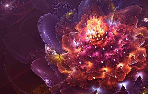 Picture bright colors, fractals, beauty, beauty, fractals, bright colors, fire flower, огненный цветок, flashes of light, …