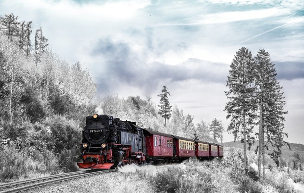 Picture winter, forest, the sky, rails, the engine, railroad