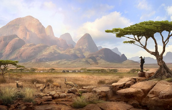 Picture mountains, traveler, Solomon Kane, Africa Landscape, savannah