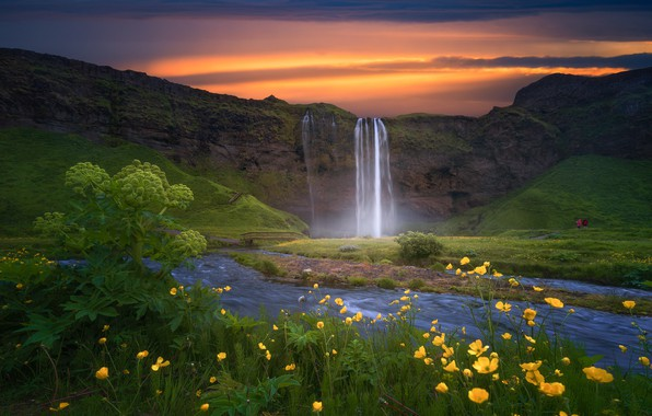 Picture sunset, flowers, waterfall, Iceland