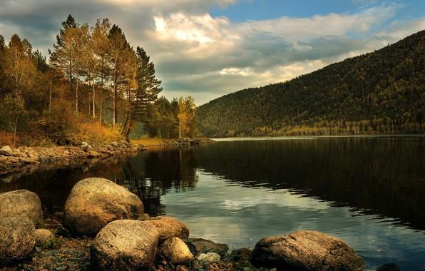 Picture autumn, forest, nature, river, stones, hills