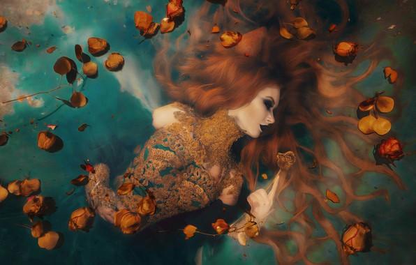 Picture water, girl, flowers, style, mood, hair, roses, makeup, petals, dress, red, redhead, Sophia Oznobishina