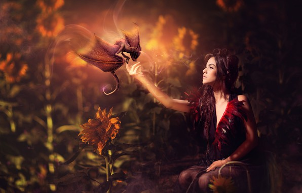 Picture girl, sunflowers, dragon, brunette, fantasy, Evgeny Loza, Yevhen Makarenko