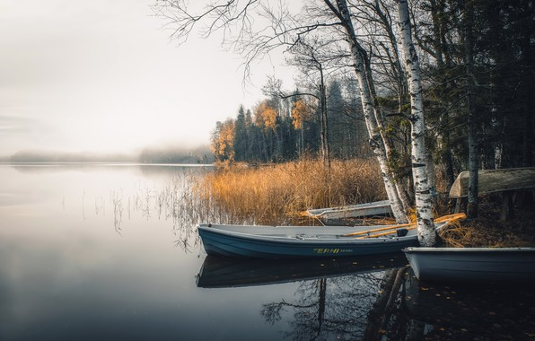 Picture fog, lake, boats
