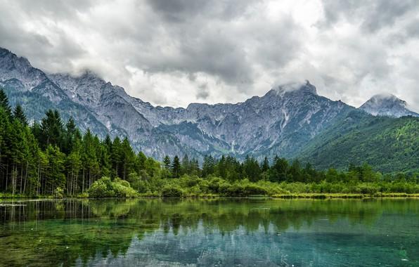 Picture landscape, nature, beauty