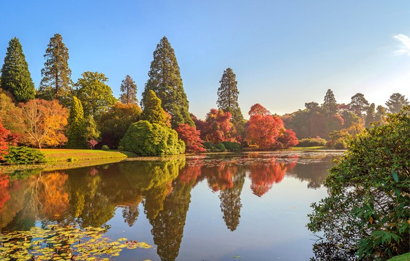 Picture autumn, the sun, trees, river, England, Sheffield Park