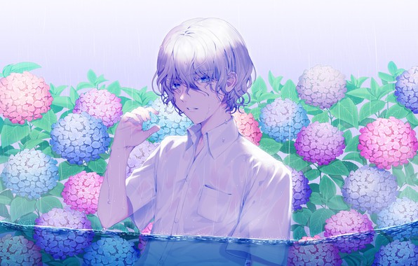 Picture drops, wet, rain, guy, curls, in the water, hydrangea, white shirt, lilac hair