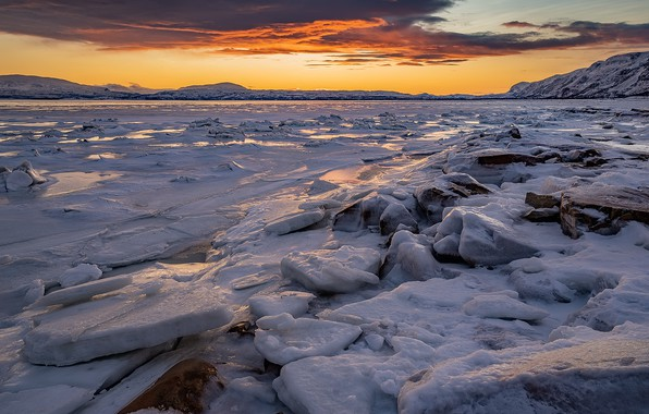 Picture cold, sunset, ice
