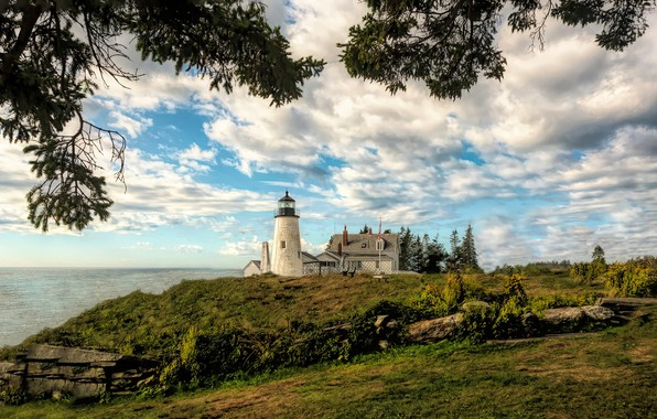 Picture branches, the ocean, lighthouse, Bay, Maine, Man, Pemaquid Point Lighthouse, Bristol, Bristol, Muscongus Bay