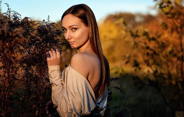Picture look, the sun, nature, pose, model, portrait, makeup, hairstyle, brown hair, beauty, bokeh, Natasha, Sergei …