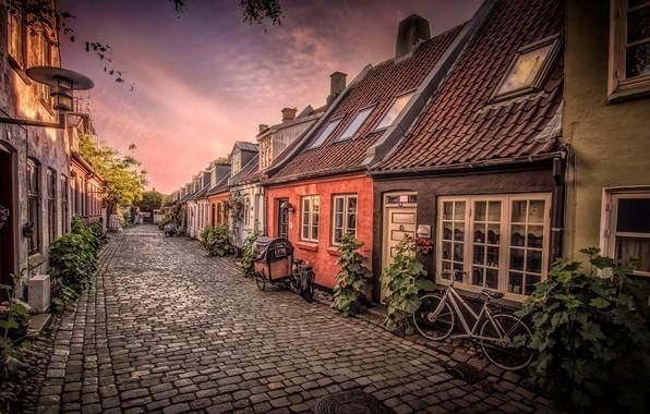 Picture street, home, Denmark, bikes, Aarhus