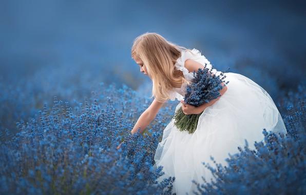 Picture flowers, mood, bouquet, dress, girl, lavender, bokeh