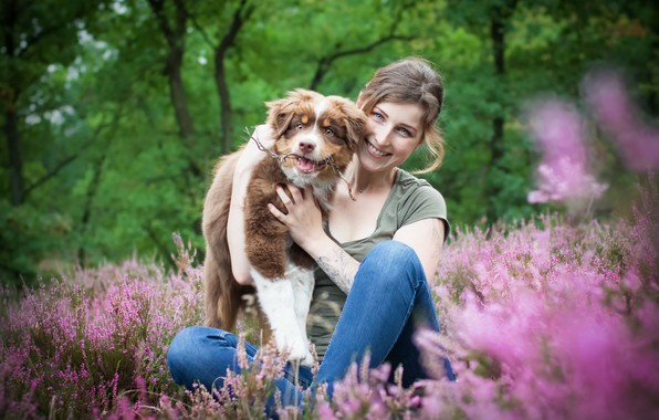 Picture summer, girl, nature, smile, dog