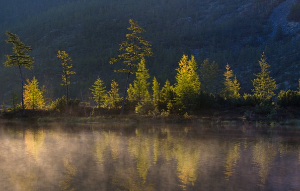 Picture trees, landscape, nature, lake, mountain, morning, forest, Kolyma