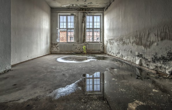 Picture room, puddle, window, naturalism