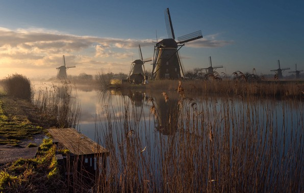 Picture grass, landscape, nature, fog, river, morning, mill, Netherlands, Bank, Holland, mostok