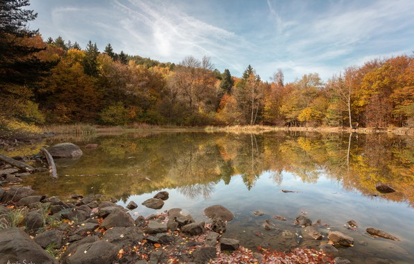 Picture autumn, forest, trees, landscape, nature, lake, reflection, stones, Bulgaria, Alexander Sandev