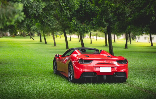 Picture grass, trees, red, sports car, rear view, Ferrari 488 Spider