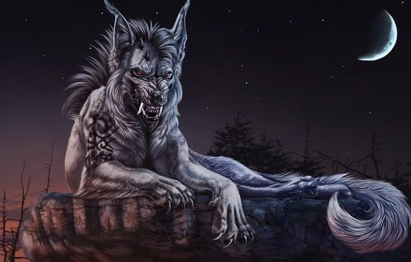 Picture night, a month, mystic, grin, werewolf, boulder, сказочное существо