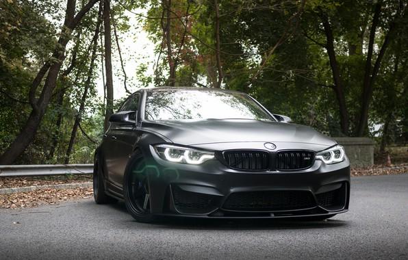 Picture BMW, Light, Black, Sight, F81