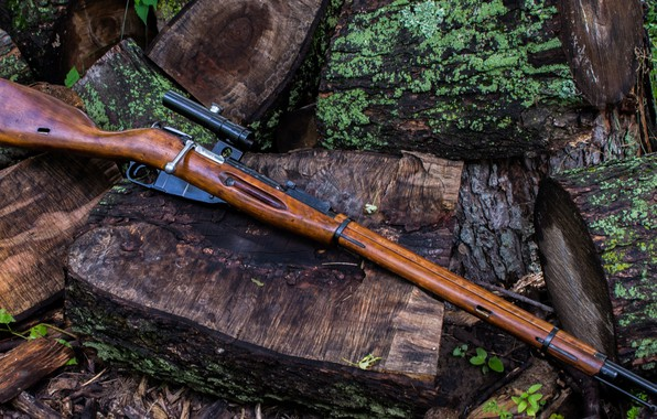 Picture weapons, rifle, weapon, sniper, rifle, trehlinejka, Mosin