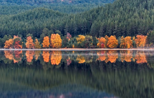 Picture autumn, forest, water, trees, mountains, lake, reflection, shore, Scotland, Loch Morlich