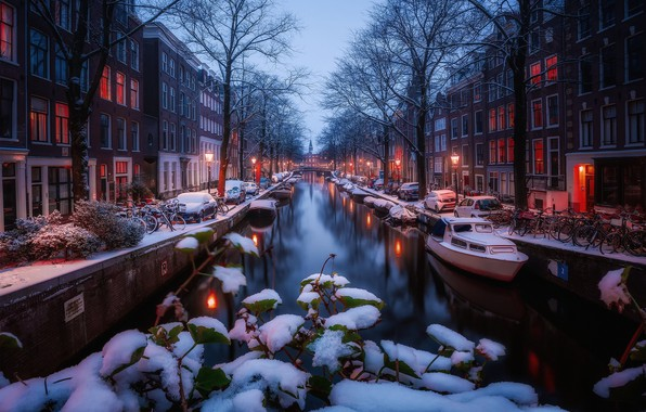 Picture winter, light, snow, lights, morning, Amsterdam, channel