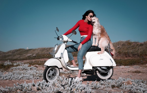 Picture girl, mood, coast, dog, jeans, friends, scooter, scooter