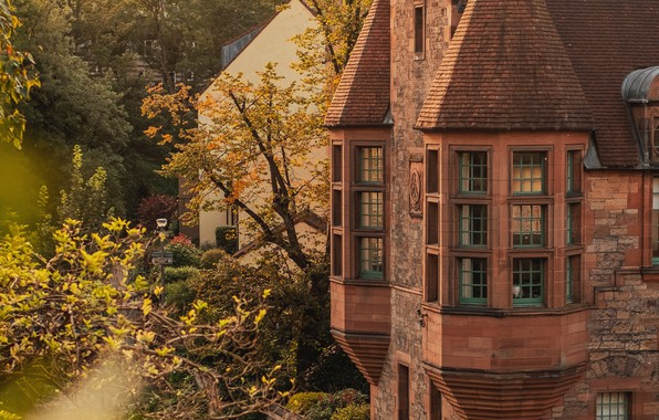 Picture wallpaper, windows, trees, autumn, old, leaves, landscapes, glare, bushes, village, castle, architecture, cottage, building, 4k …
