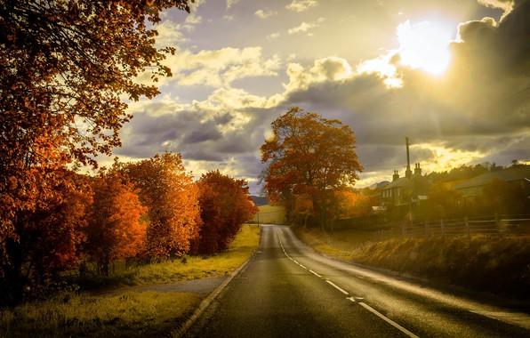 Picture road, autumn, sunset