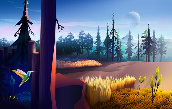Picture colorful, dark, moon, forest, trees, field, nature, bird, wood, wings, rendering, Colibri