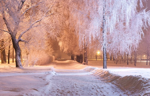 Picture winter, snow, trees, Park, the evening, track