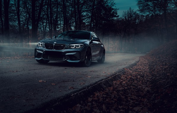 Picture road, forest, BMW, car