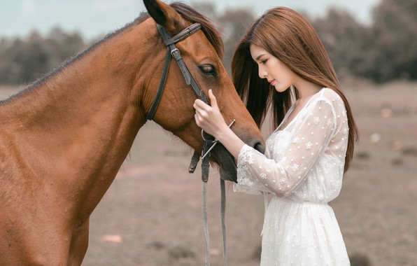 Picture look, face, girl, nature, face, background, each, horse, horse, portrait, hands, friendship, profile, brown hair, ...