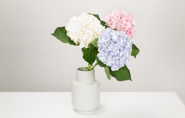 Picture bouquet, vase, hydrangea