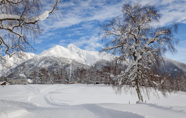 Picture winter, road, snow, trees, landscape, mountains, nature, beauty, frost, day