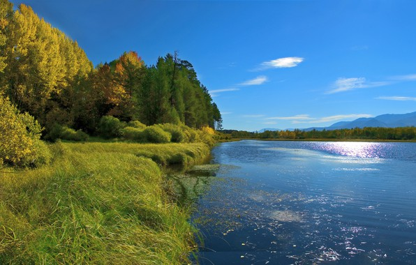Picture autumn, forest, the sky, grass, the sun, trees, mountains, river, shore, Russia, Siberia