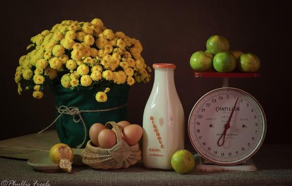 Picture flowers, eggs, milk, still life, basket, Libra, chrysanthemum, yellow, milk bottle, magarini