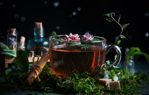 Picture flowers, bubbles, tea, moss, Cup, sugar, bokeh, scroll