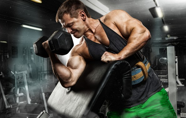 Picture pose, muscle, muscle, training, biceps, gym, training, weight, Gym, dumbbells, biceps, bodybuilder, gym