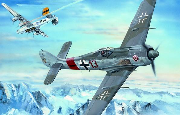 Picture Focke-Wulf, Shrike, piston fighter monoplane, German single-seater single, FW-190A-8