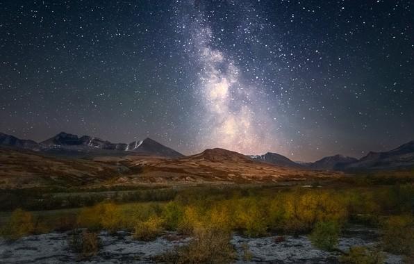 Picture autumn, mountains, stars, Norway, the bushes, Norway, starry sky, Rondane National Park, Rondane Mountains, Mountain …