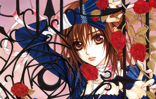 Picture fence, art, vampire knight, yuuki cross, knight-vampire, blue dress, red roses, matsuri hino