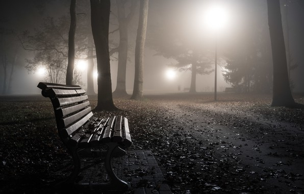Picture night, the city, bench