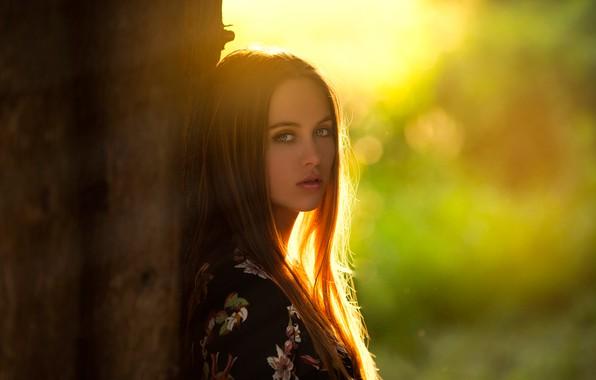 Picture girl, Model, green eyes, long hair, photo, sunset, tree, lips, face, brunette, trunk, portrait, mouth, …