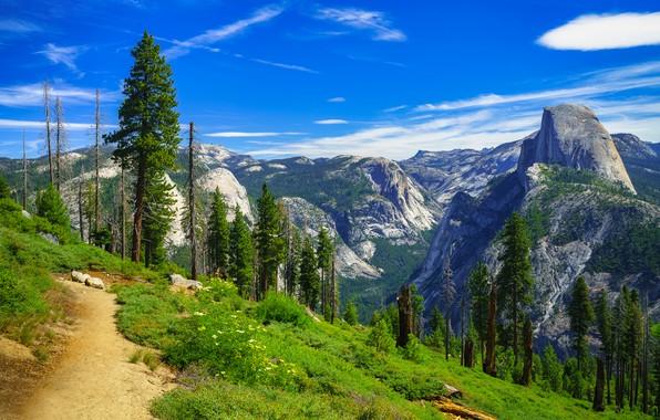 Picture trees, mountains, CA, path, California, Yosemite Valley, Yosemite National Park, Sierra Nevada, Yosemite Valley, Sierra …